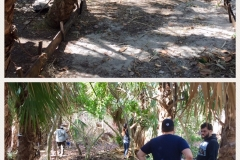 2018 Beach Clean Up and Trail Building (8)