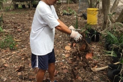 2018 Beach Clean Up and Trail Building (6)